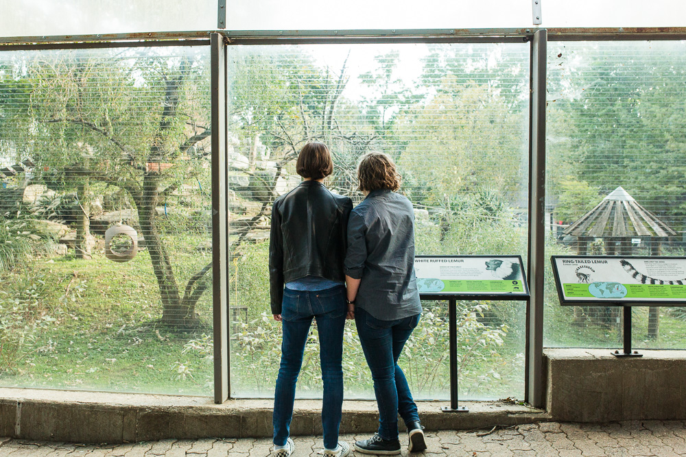 National Zoo engagement pictures looking at the lemurs | Washington, DC Engagement Photo Ideas