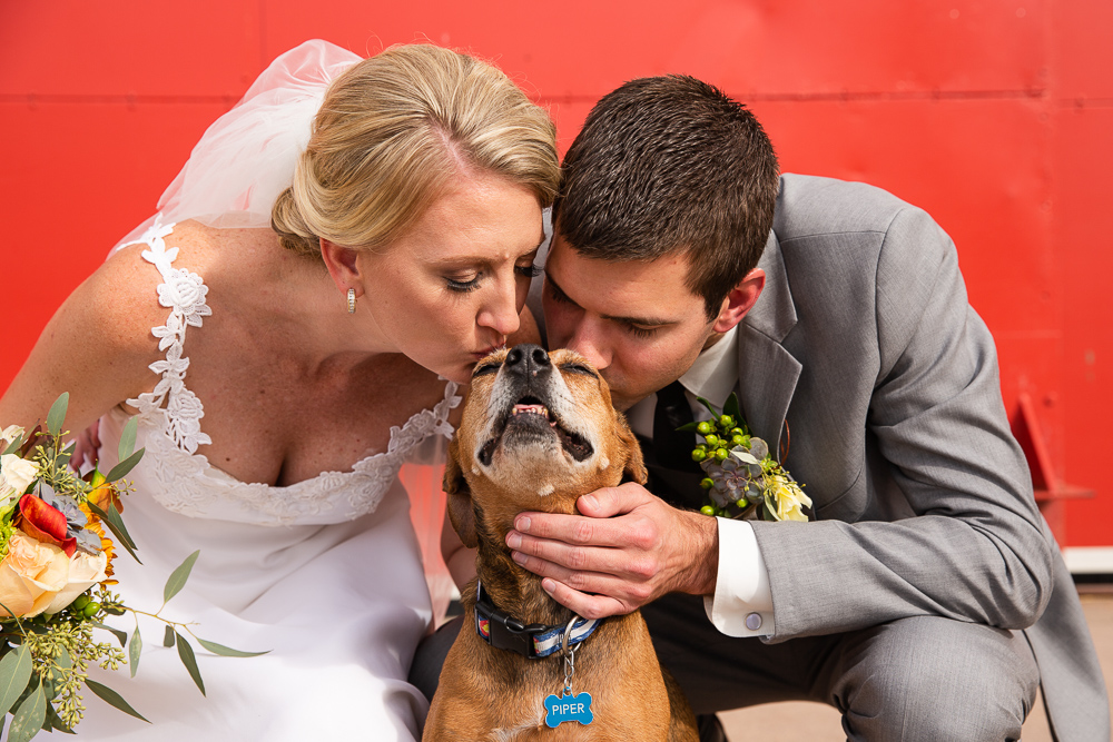Bride and groom giving their dog a kiss | Hangar at Stanley Marketplace wedding