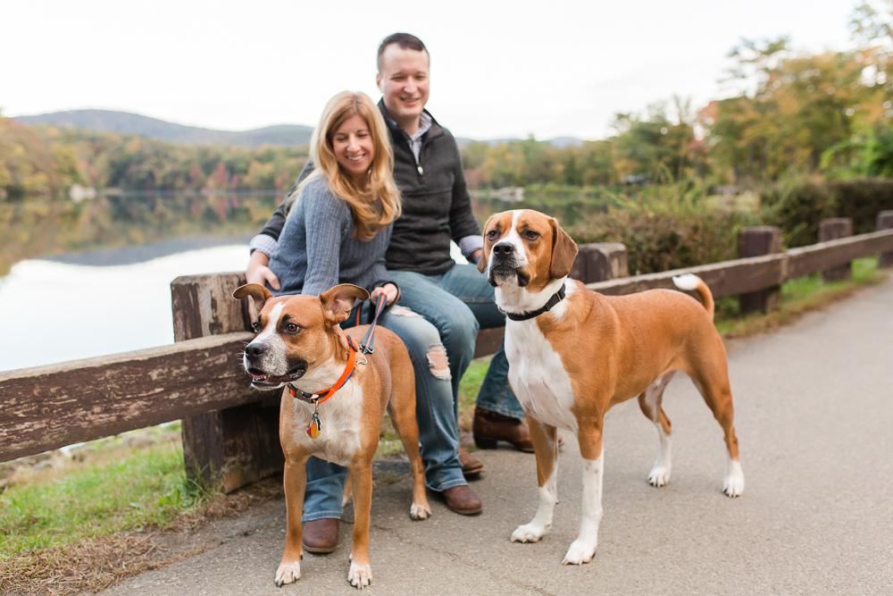 Engagement photos with dogs at Bear Mountain State Park, NY   Bear Mountain engagement pictures