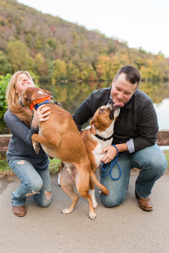 Funny picture of dogs licking their parents by Hessian Lake at Bear Mountain, New York