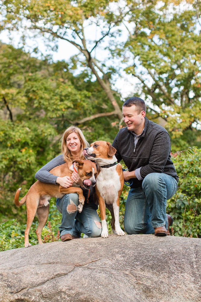 Dog lovers engagement photos at Bear Mountain State Park in the Hudson Valley