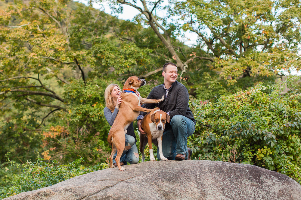 Dog pushing his dad away from his brother   Funny engagement pictures