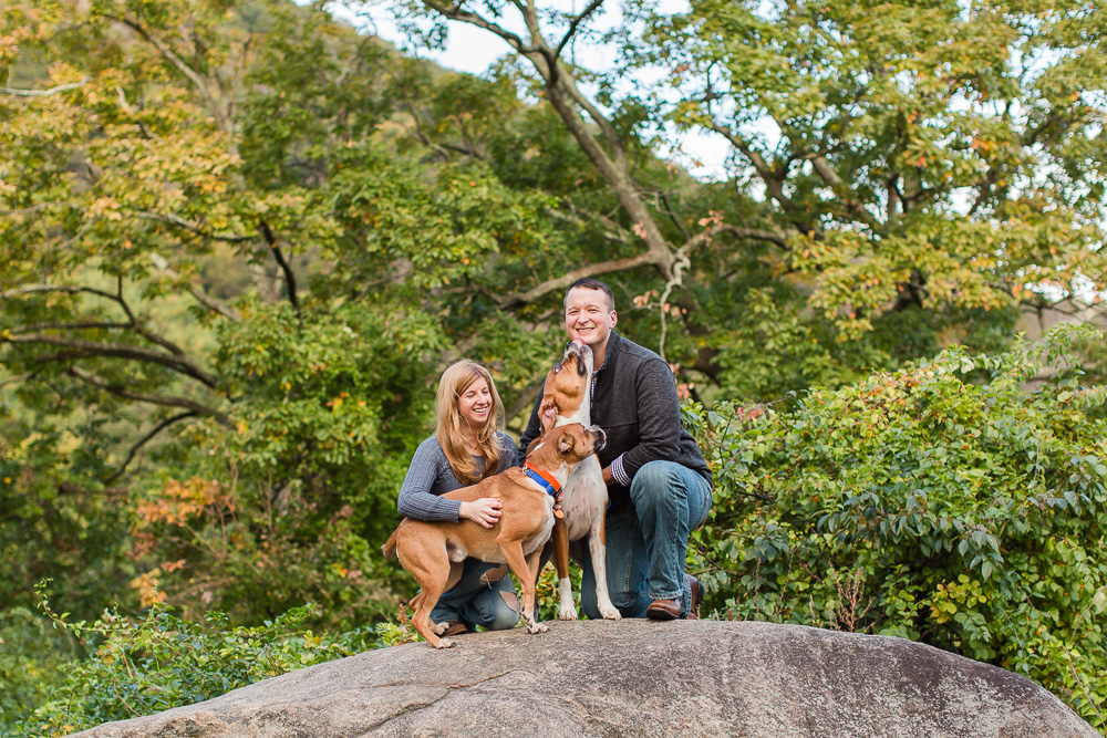 Happy dog giving his dad a kiss during the engagement shoot in the Hudson Valley, NY