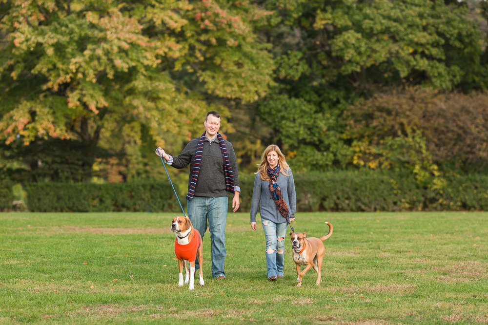 Happy couple walking their dogs through a field at Bear Mountain State Park   Hudson valley engagement pictures