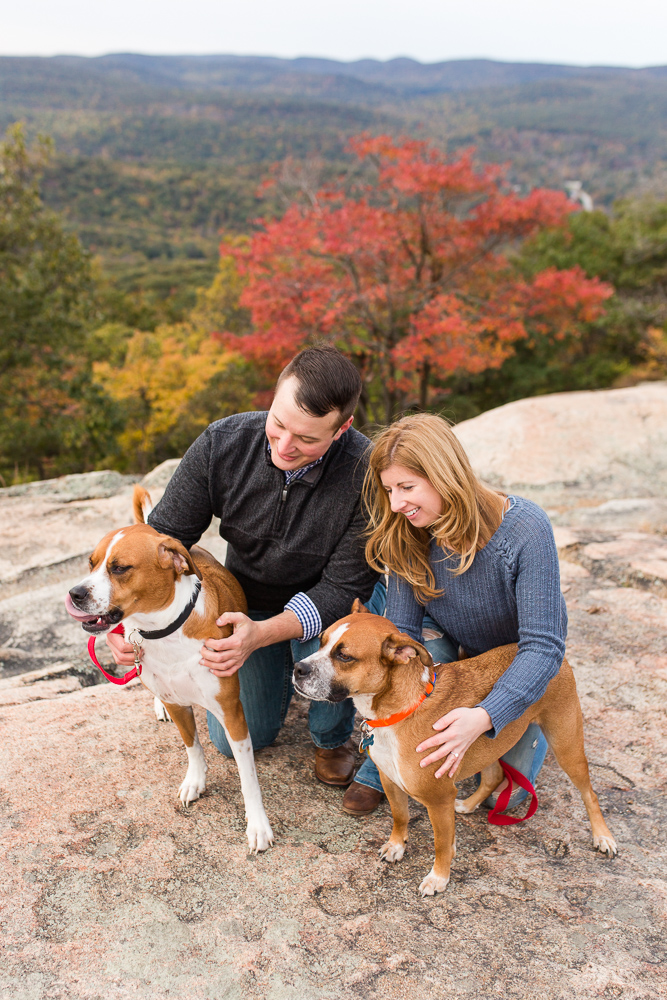 Engaged couple with their rescue dogs during fall engagement session at the top of Bear Mountain State Park