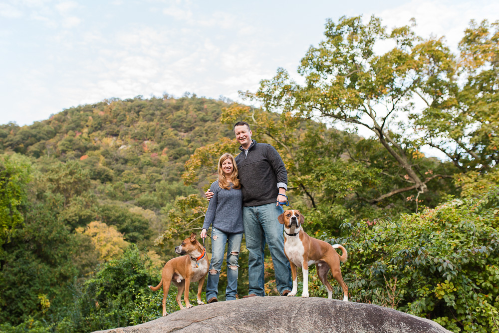 Bear Mountain, NY engagement pictures while hiking with two rescue dogs   Hudson Valley engagement photography