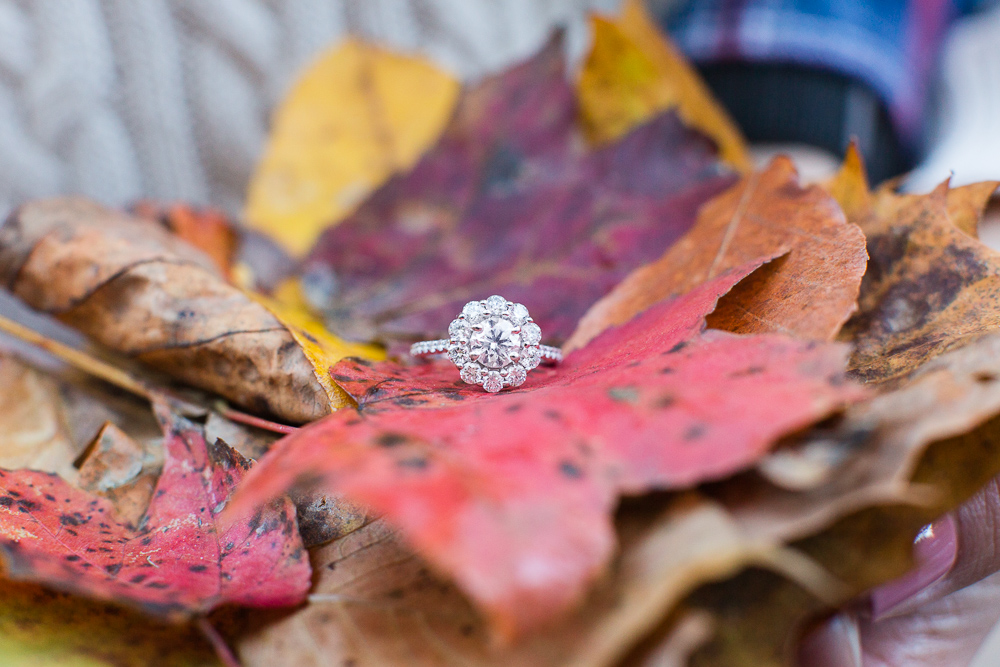 Engagement ring with fall leaves | Washington DC Engagement Photography