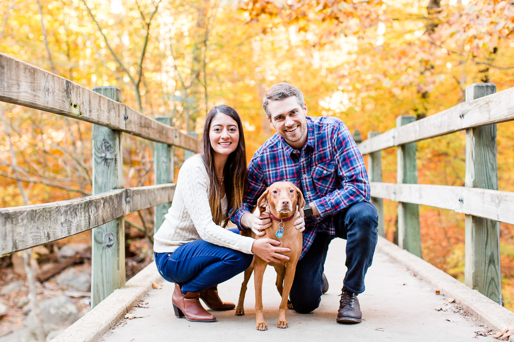 Engaged couple with their vizsla on a bridge over Rock Creek | Favorite engagement spots in Washington DC