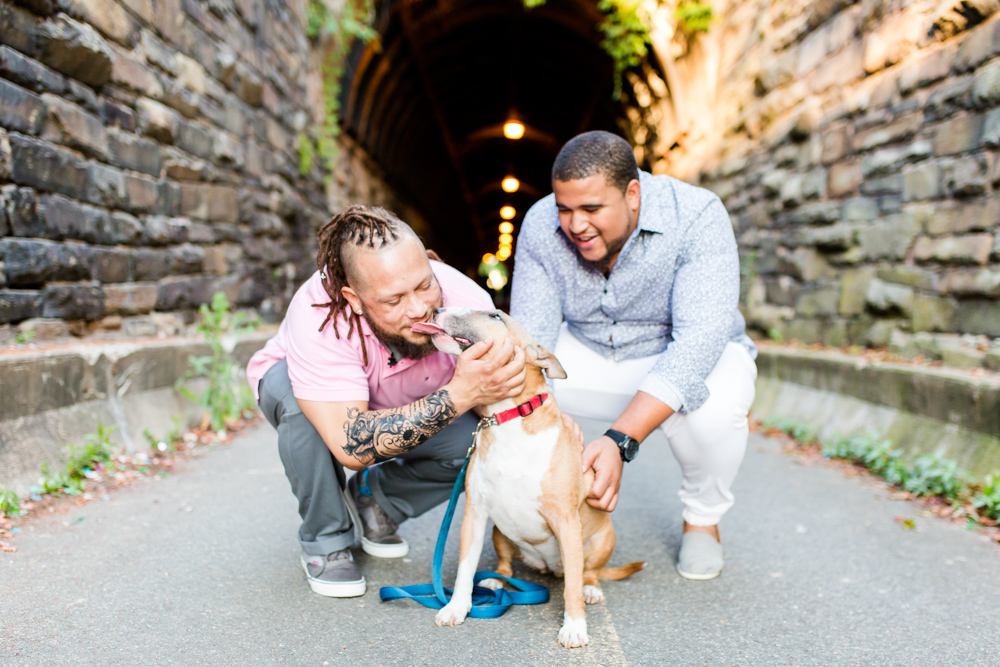 Bull terrier giving kisses in front of the Wilkes Street Tunnel in Old Town | Best Alexandria engagement photographer