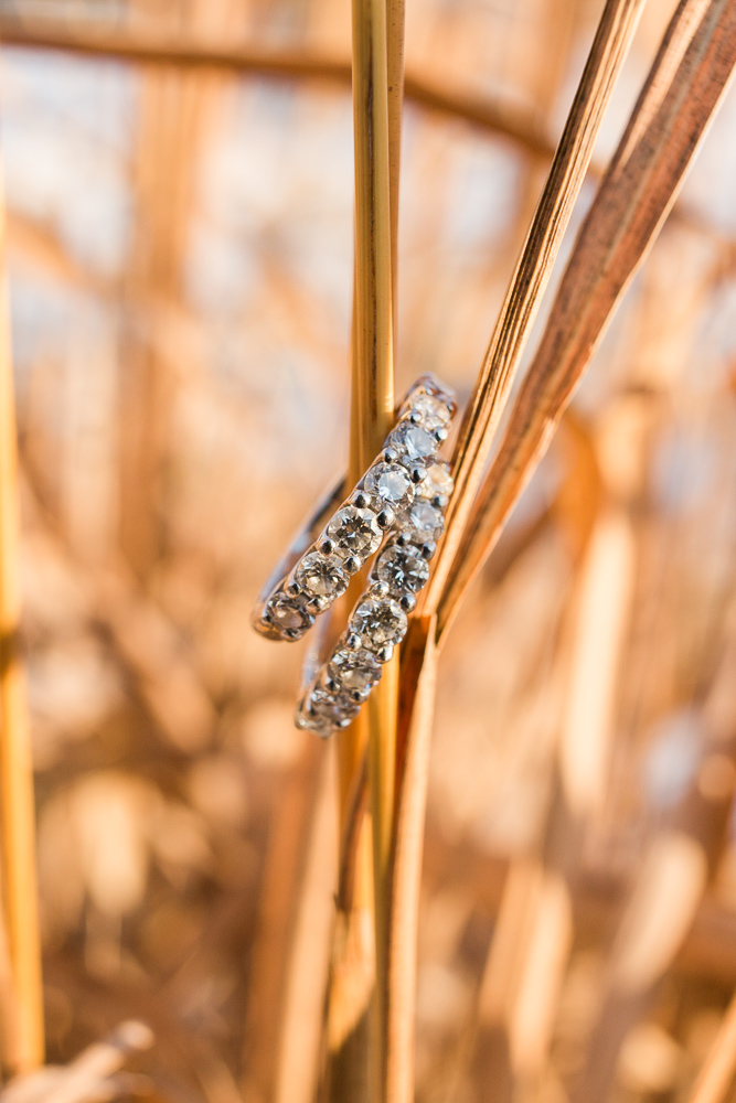 Engagement rings for two brides in the tall grass at Manassas Battlefield