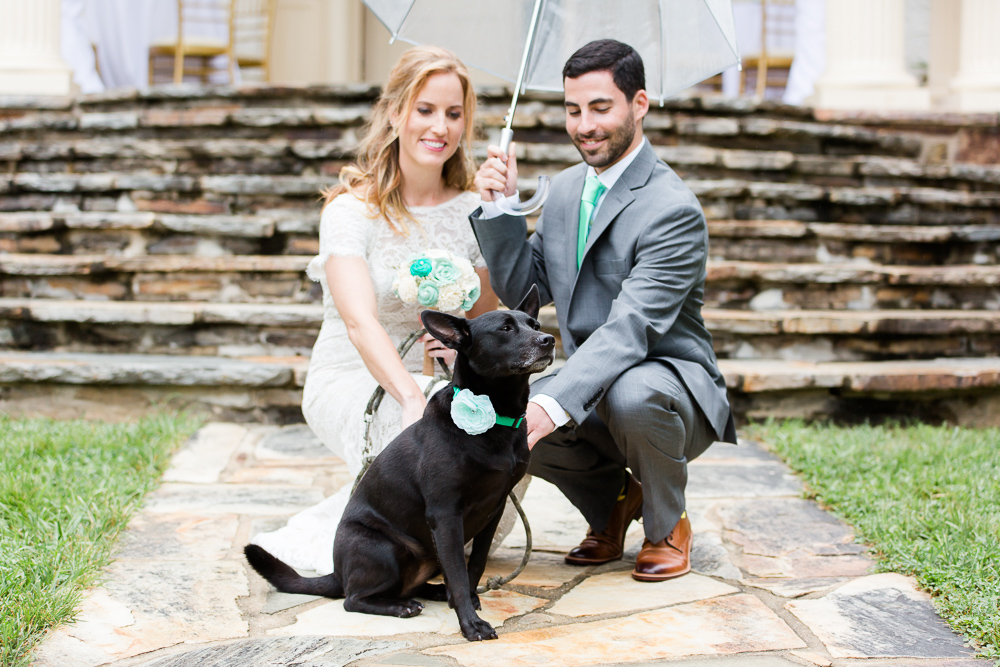 Bride and groom with their dog, taking wedding photos under an umbrella during their rainy wedding in Northern Virginia