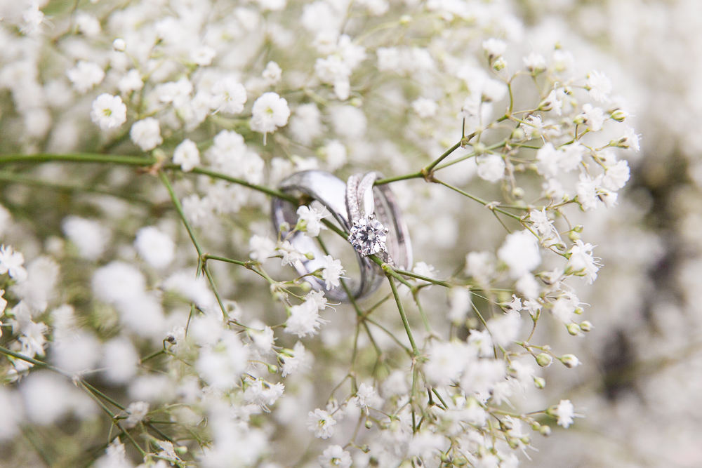 Wedding rings in baby's breath during a spring wedding at Black Horse Inn, Virginia