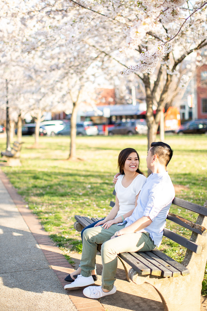 Engagement photo on a park bench in Washington DC under the cherry blossom trees