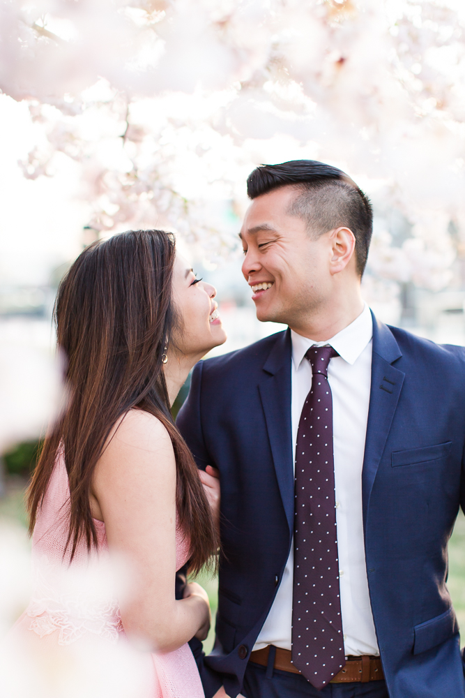 Sweet moment as engaged couple cuddles under a cherry blossom tree