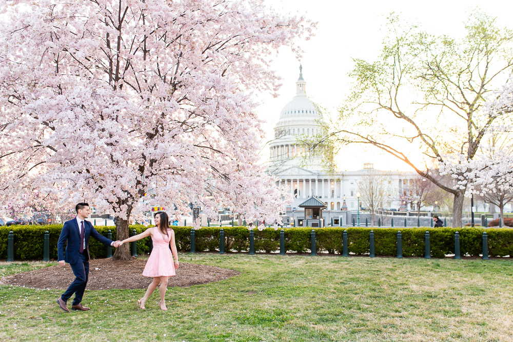 Engagement photo walking in front of the Capitol in Washington, DC during cherry blossom season
