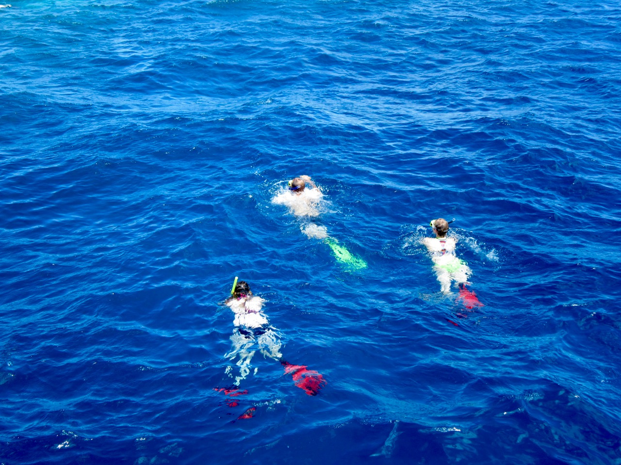 Matthew, Patricia and I snorkeling.