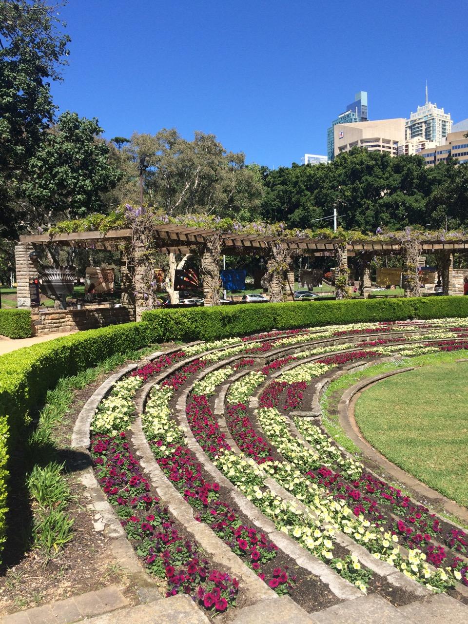 A beautiful site in Hyde Park