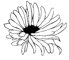 Flower copy.png