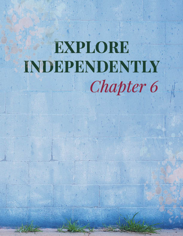 CHAPTER 6   Explore Independently   The next level of boldness opens up the world of travel in a unique way. Chapter 6 presents challenges and journaling to help you gain even more boldness.
