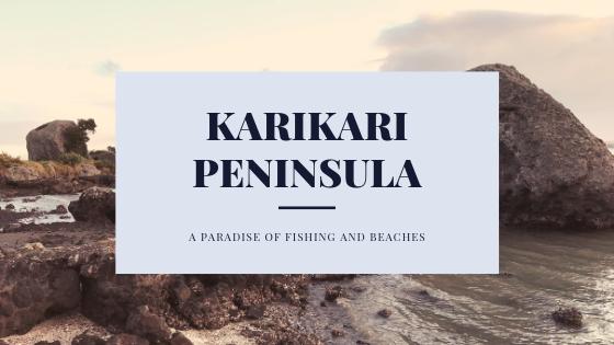 karikari peninsula-2.png