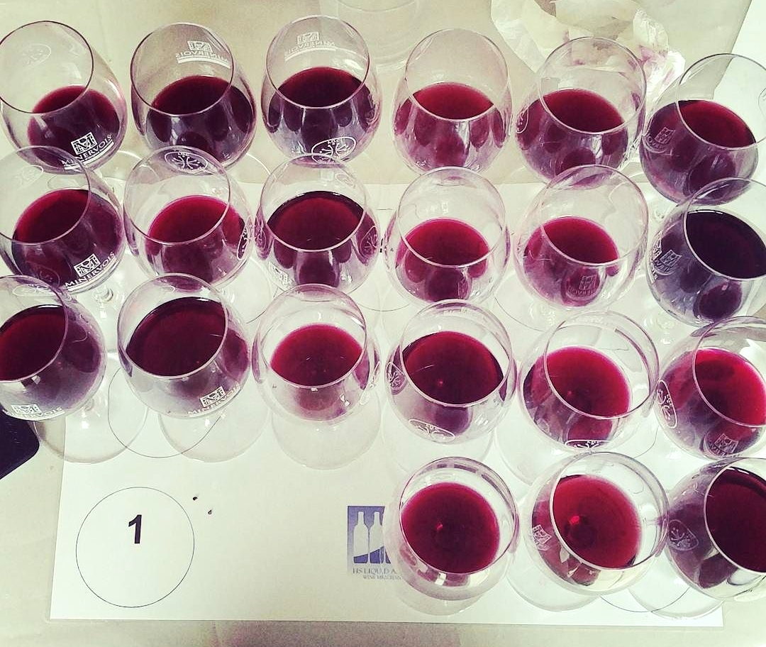 Wine_tasting_assemblage