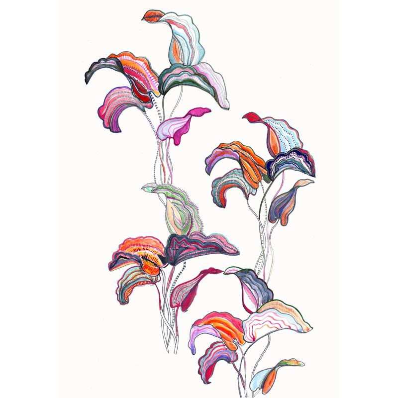 oriental-flower-eleni-malami-illustration-web.jpg