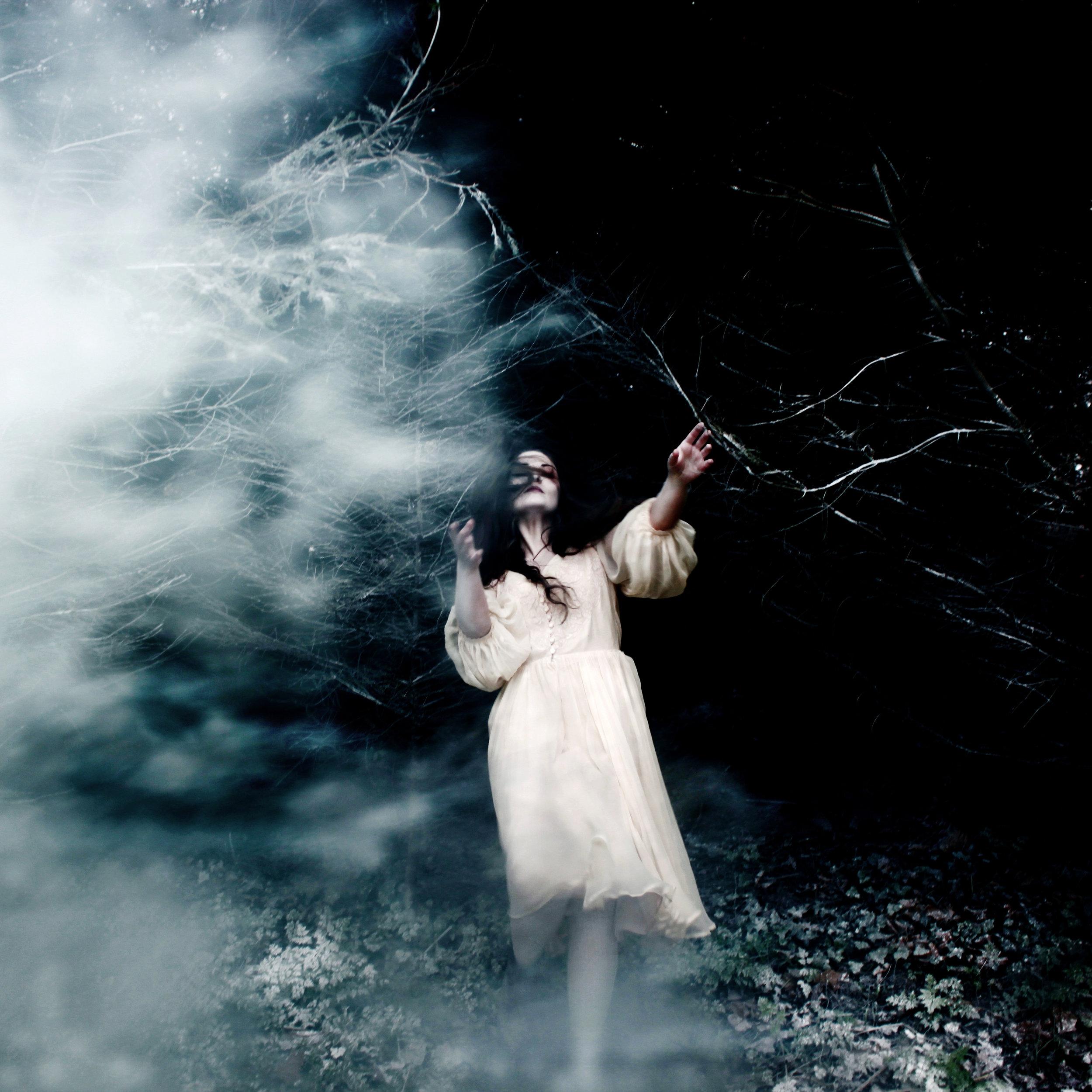 Through Sleepwalkers wood.jpg