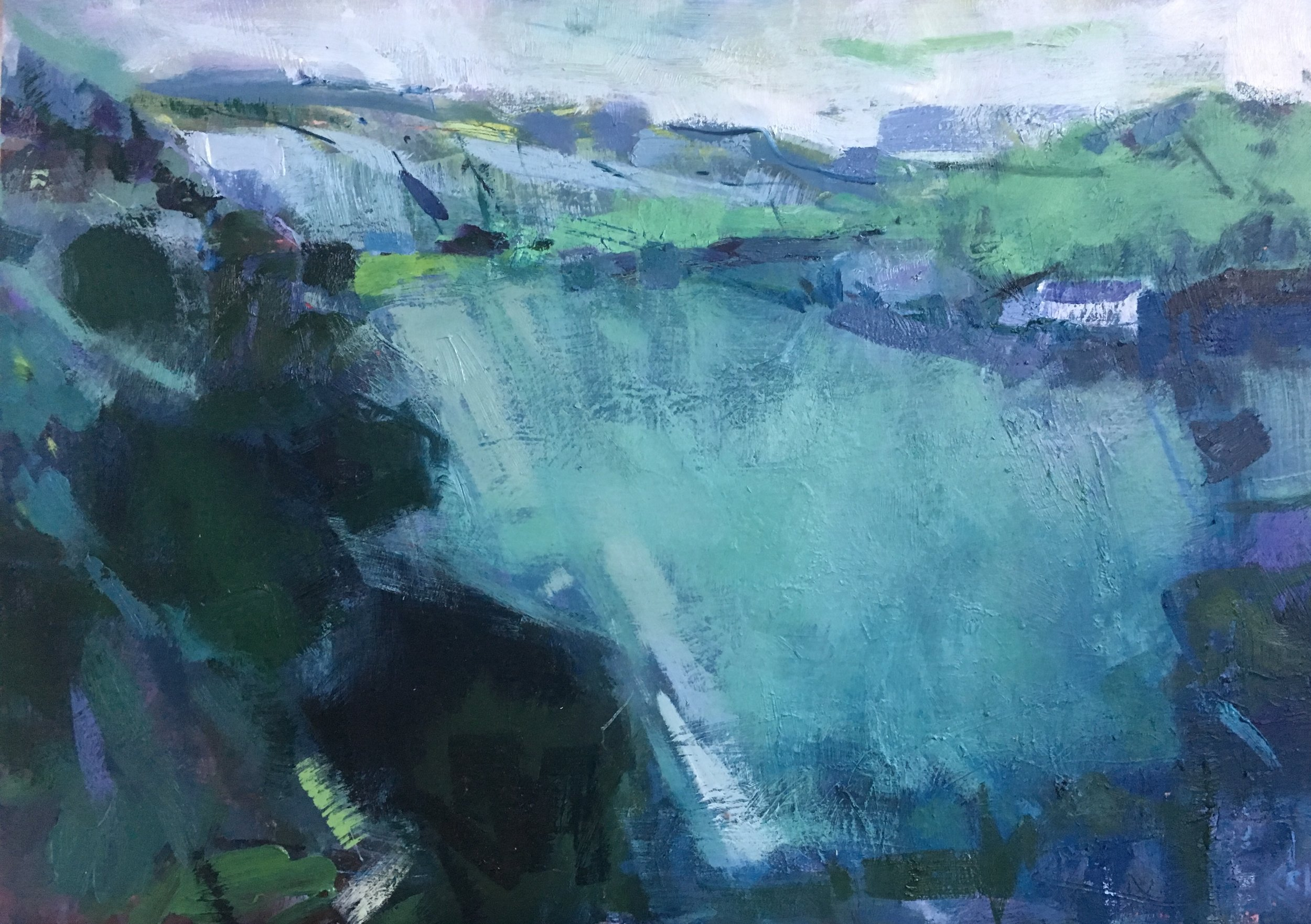 Towards Llanfyllin  oil on canvas. 50 x 60 cm