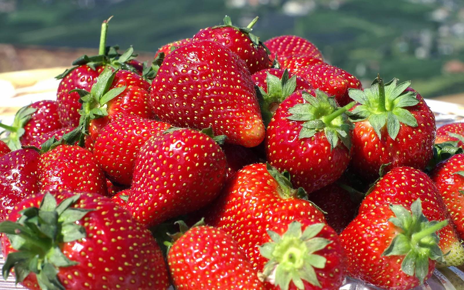 Strawberry Wonder