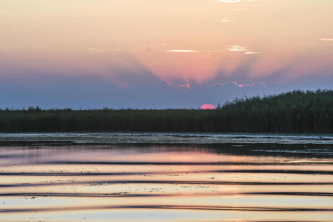 Danube Delta (43 of 43)@72.jpg