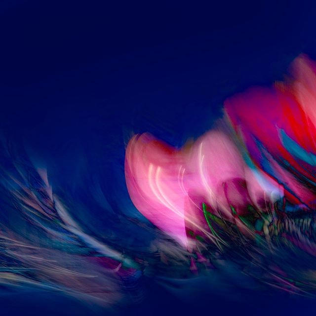 """PATIENCE . """"Have patience with all the world but first of all with yourself."""" - Saint Francis de Sales . #abstractart #fineartphotography #impressionisticphotography #fineart #abstractartorg #camerapainting #intentionalcameramovement #contemporaryartist #artdealer #artcollector #artgallery #blue #contemporaryart #londonart #gallery #interiordesign #contemporaryhome #flamingabstracts #abstractexpressionism #colorfulart #artistsoninstagram #decor"""