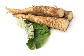 Winter Health Tip - eat burdock root
