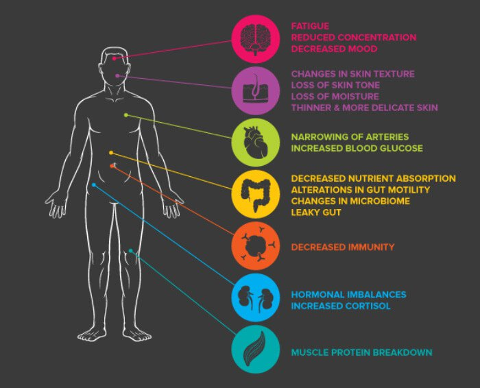 Stress = compression = dysfunction of body systems