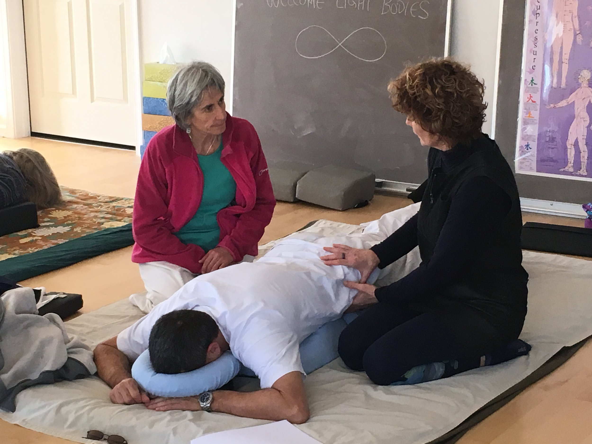 diagnosis-shiatsu-teacher-training
