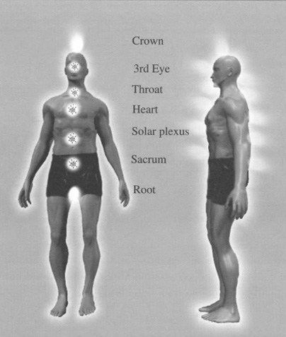 There are 7 main chakras, which are located in the etheric body and anchored in the physical body.
