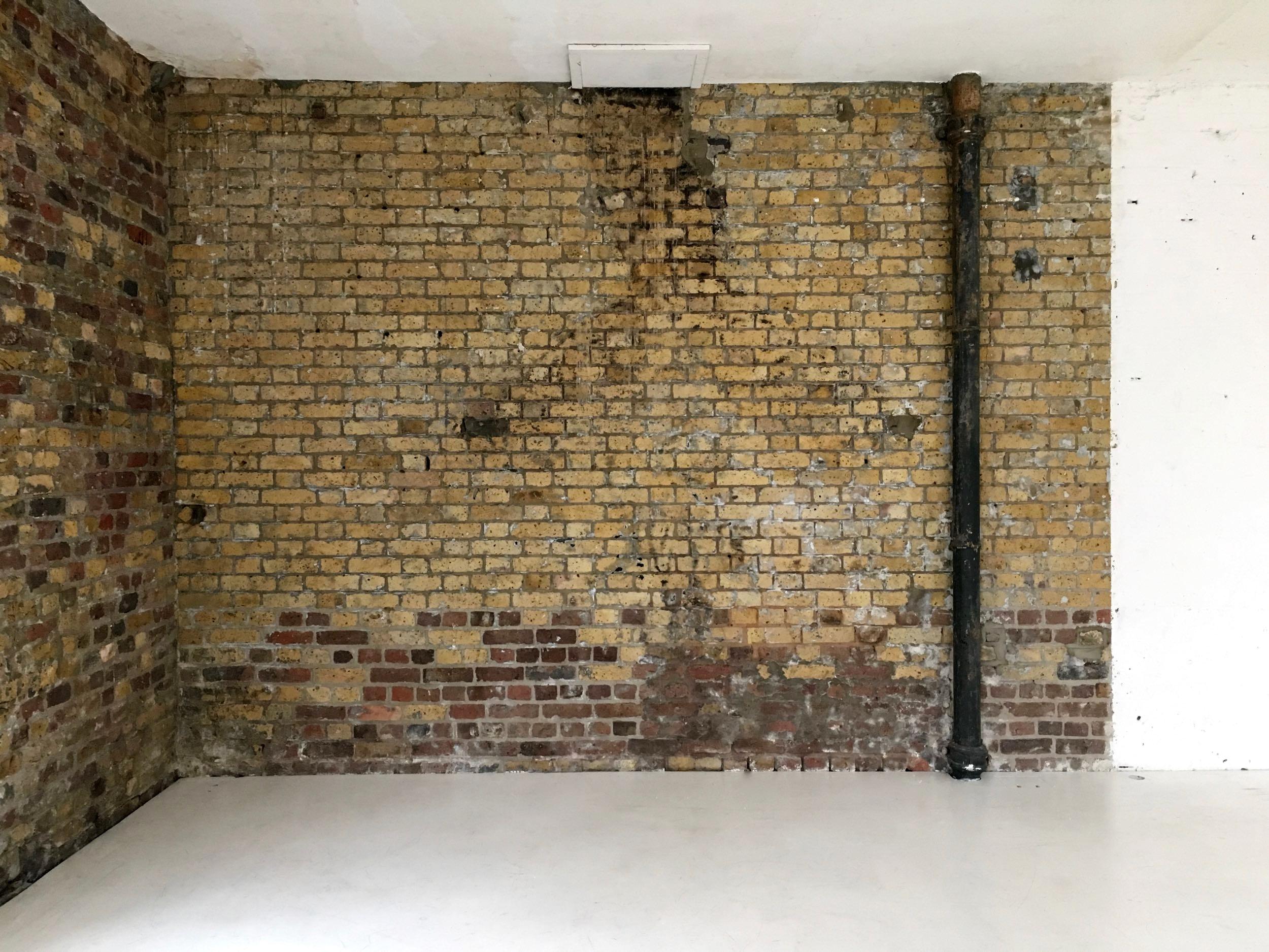 studio one natural brick walls