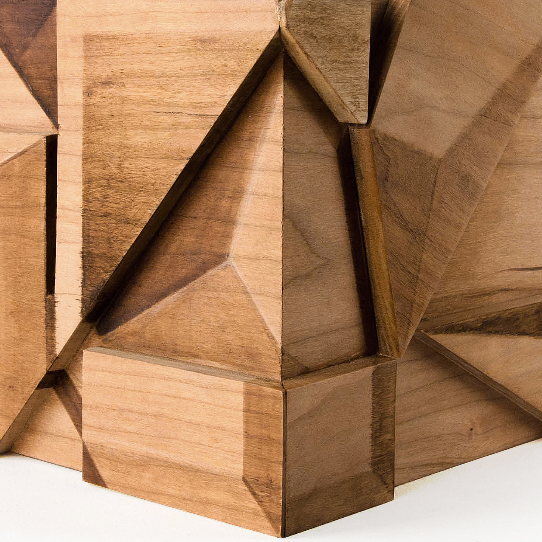 EXPLORING ILLUSIONS 2015, Wood