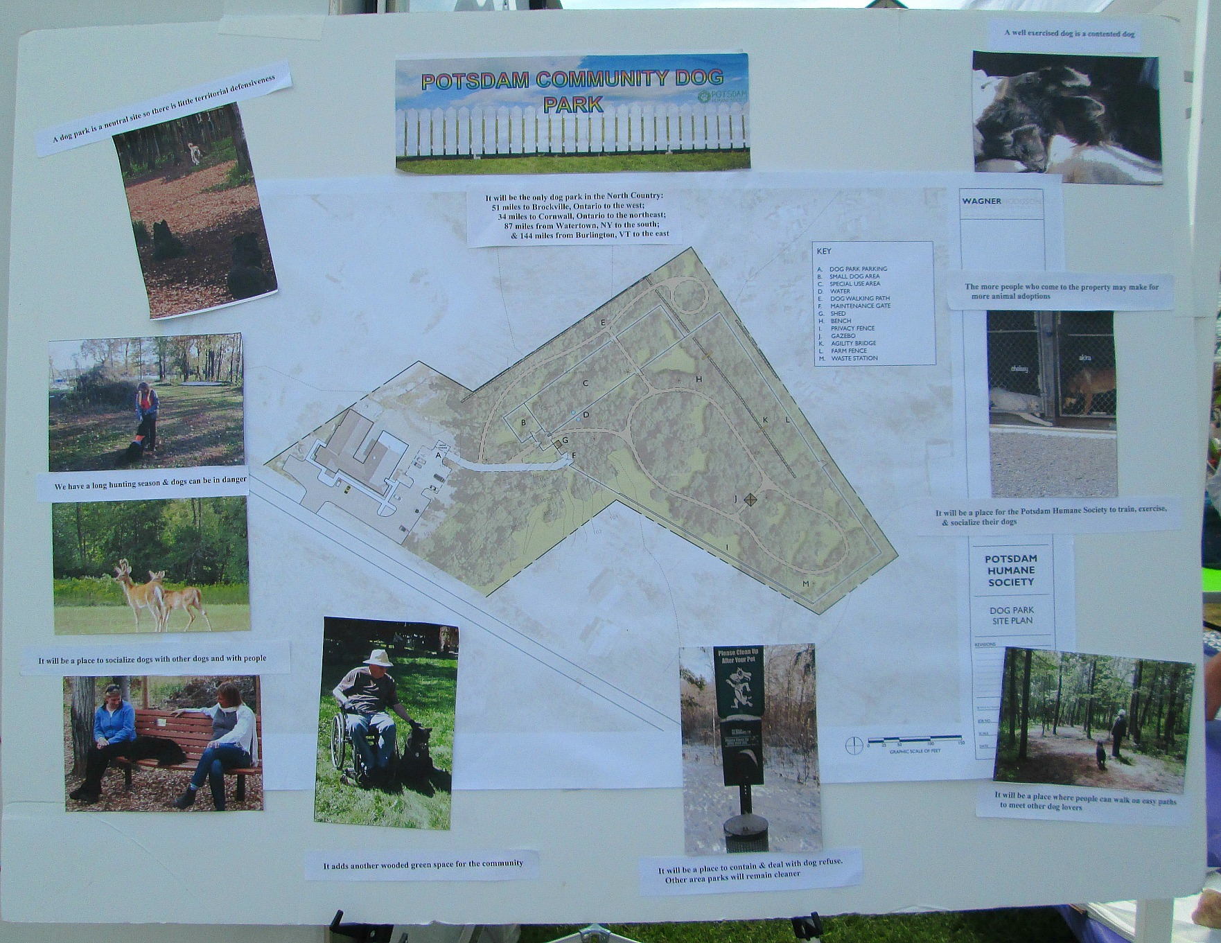 Plans for the Dog Park