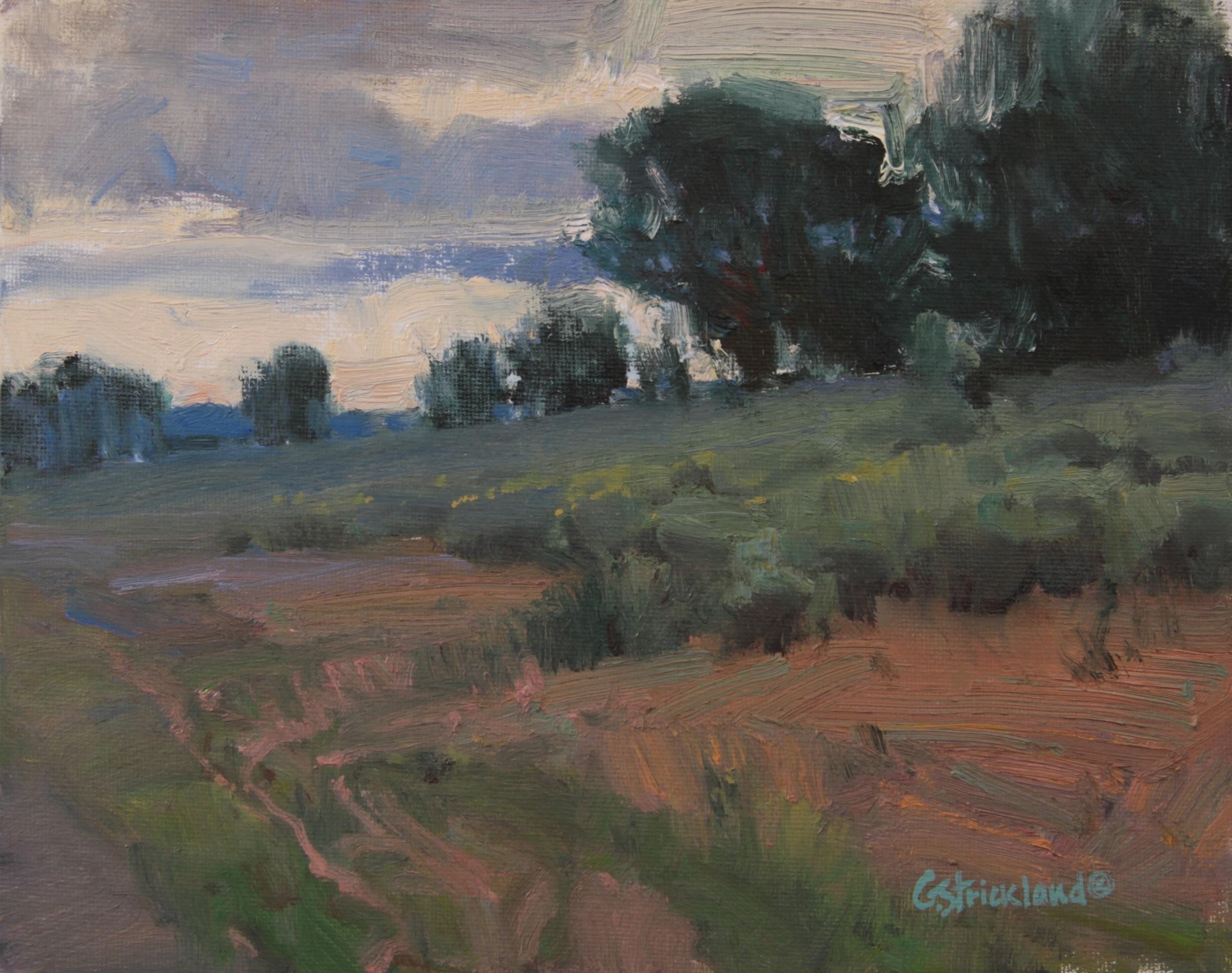 Overcast Morning 8X10