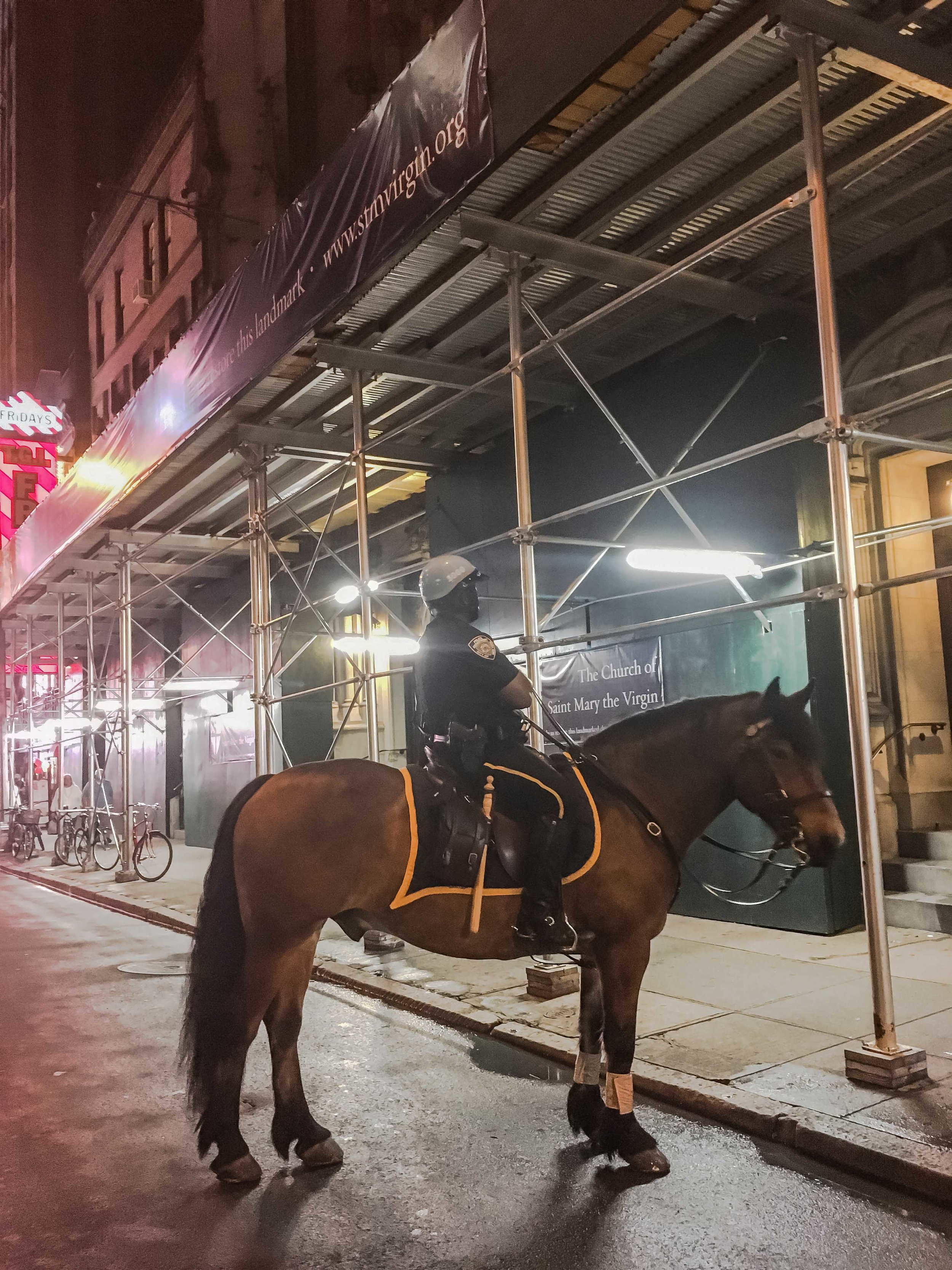 NYPD Mounted Police are very welcome in Times Square.