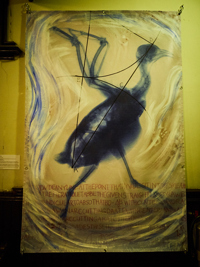 "From the Visual Arts Exhibit ""Spirit's Flight.  Photo by Ricardo Gomez"