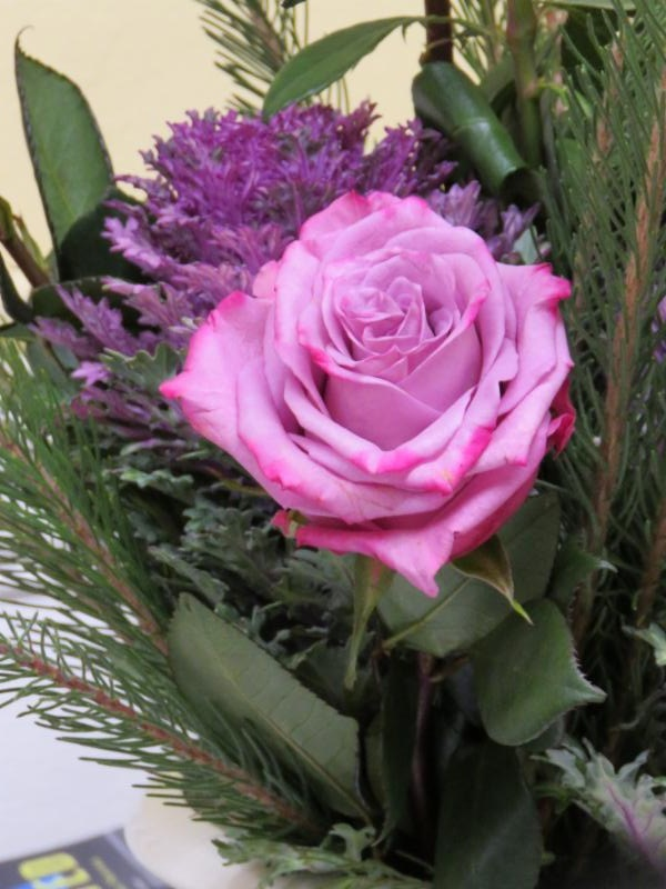A pink rose in one of the altar arrangements for the Third Sunday of Advent.  Photo by Br. Damien Joseph SSF
