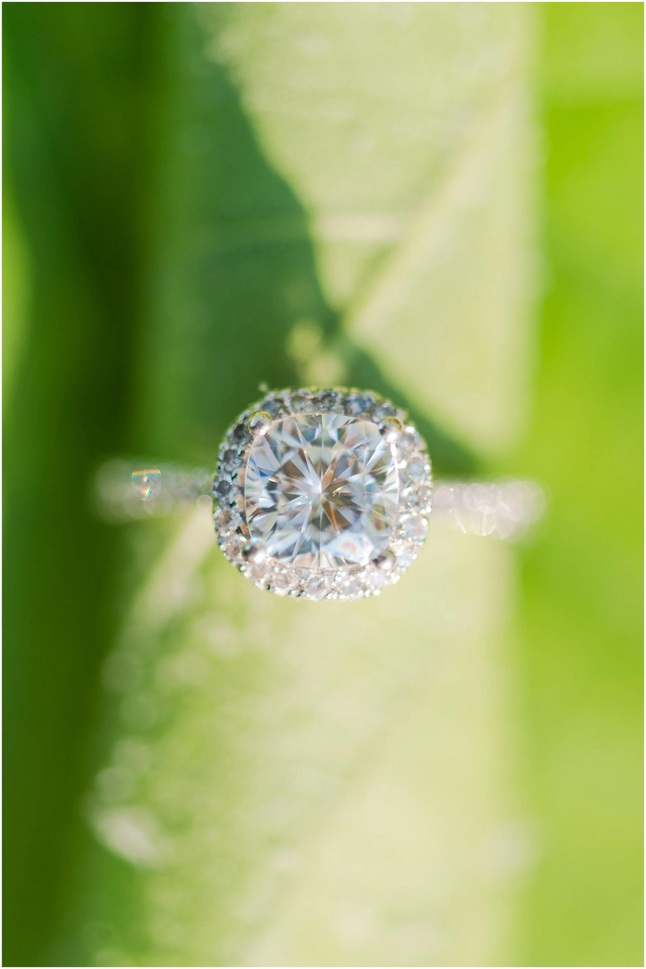 Hannah Leigh Photography Weddings and Engagements Baltimore Maryland_0023.jpg