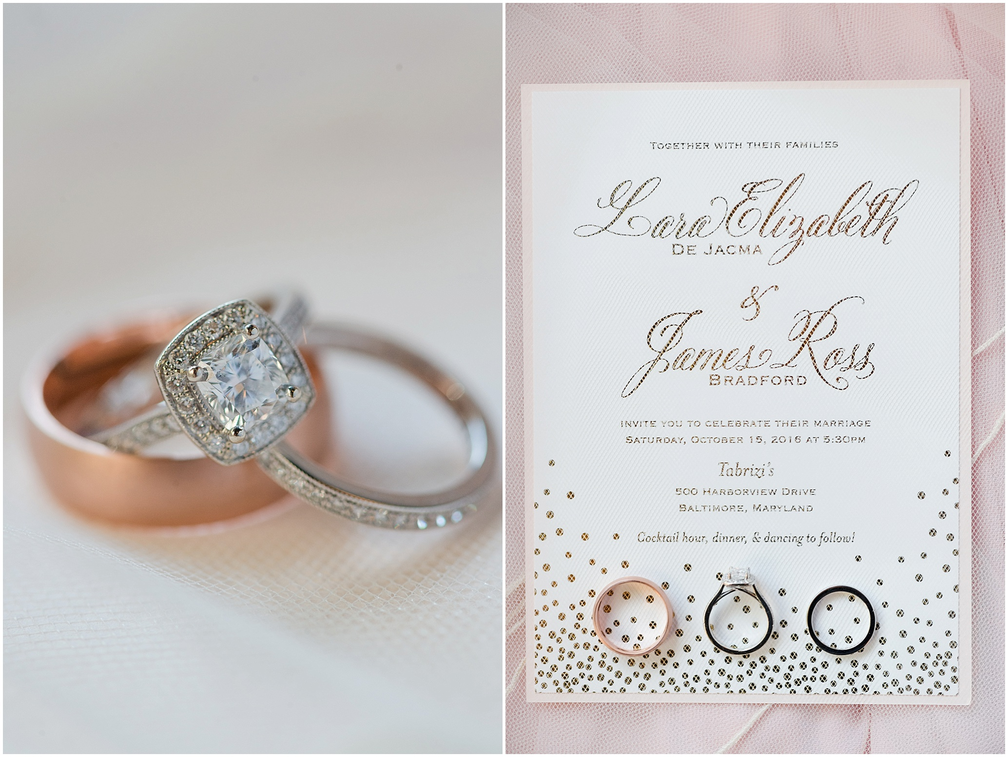 Hannah Leigh Photography Tabrizis Baltimore Wedding_2192.jpg