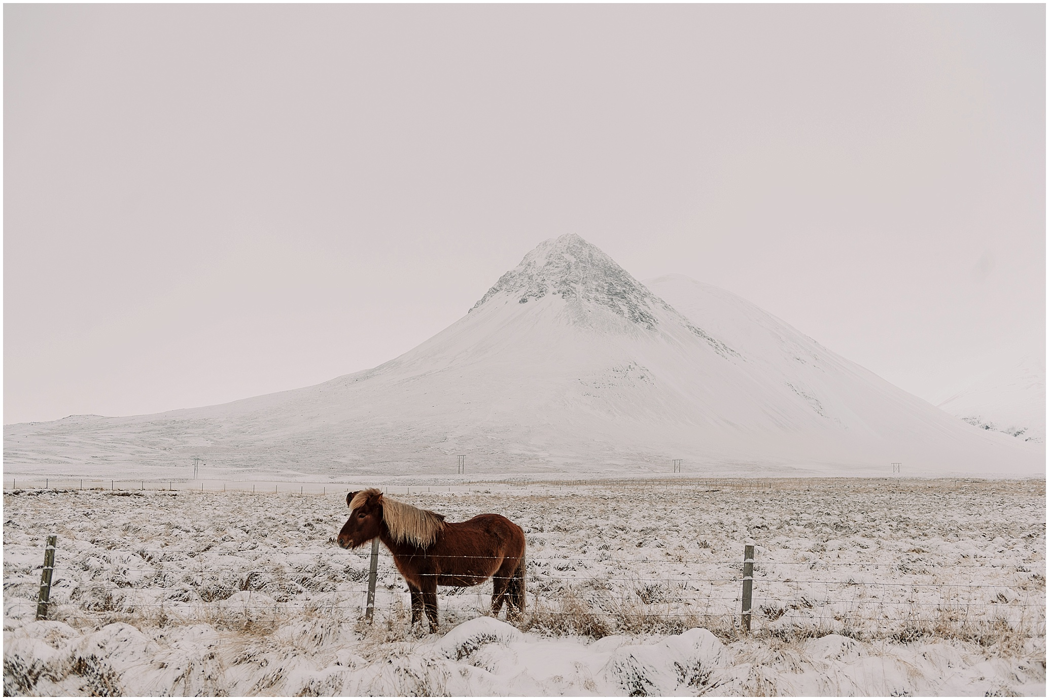 Hannah Leigh Photography Iceland Ring Road Roadtrip_3401.jpg