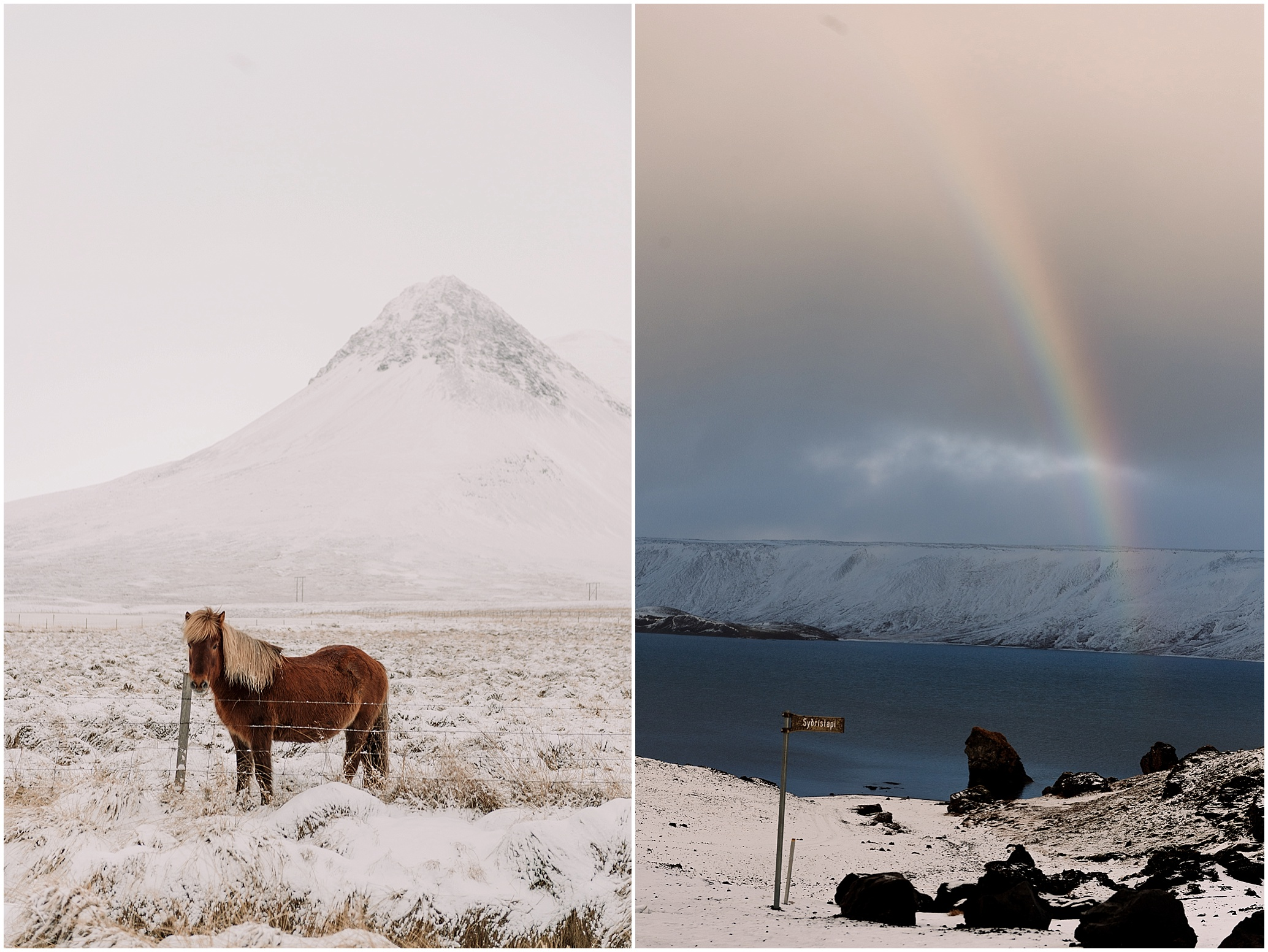 Hannah Leigh Photography Iceland Ring Road Roadtrip_3359.jpg