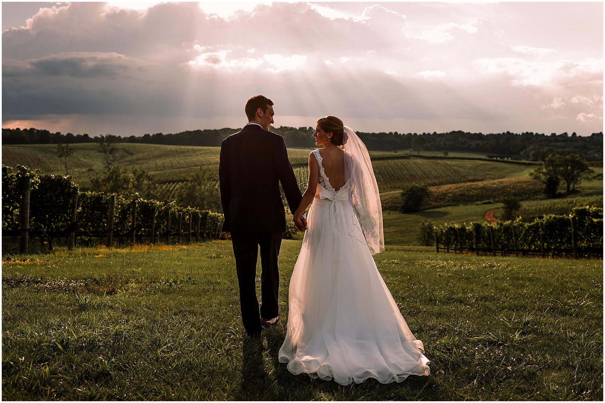 Hannah Leigh Photography Stone Tower Winery Wedding Leesburg VA_4793.jpg