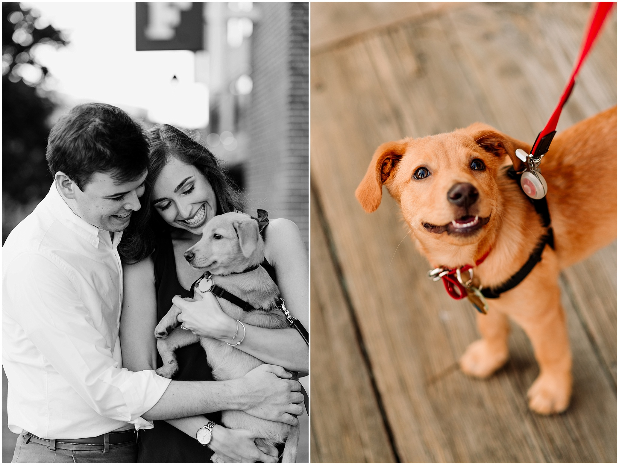 Hannah Leigh Photography Baltimore City, MD Engagement Session_5603.jpg