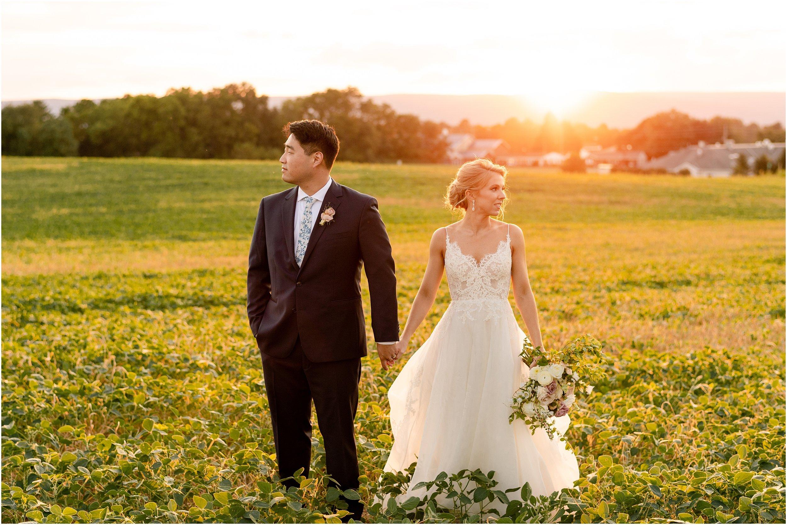 hannah leigh photography Walkers Overlook Wedding Walkersville MD_3569.jpg