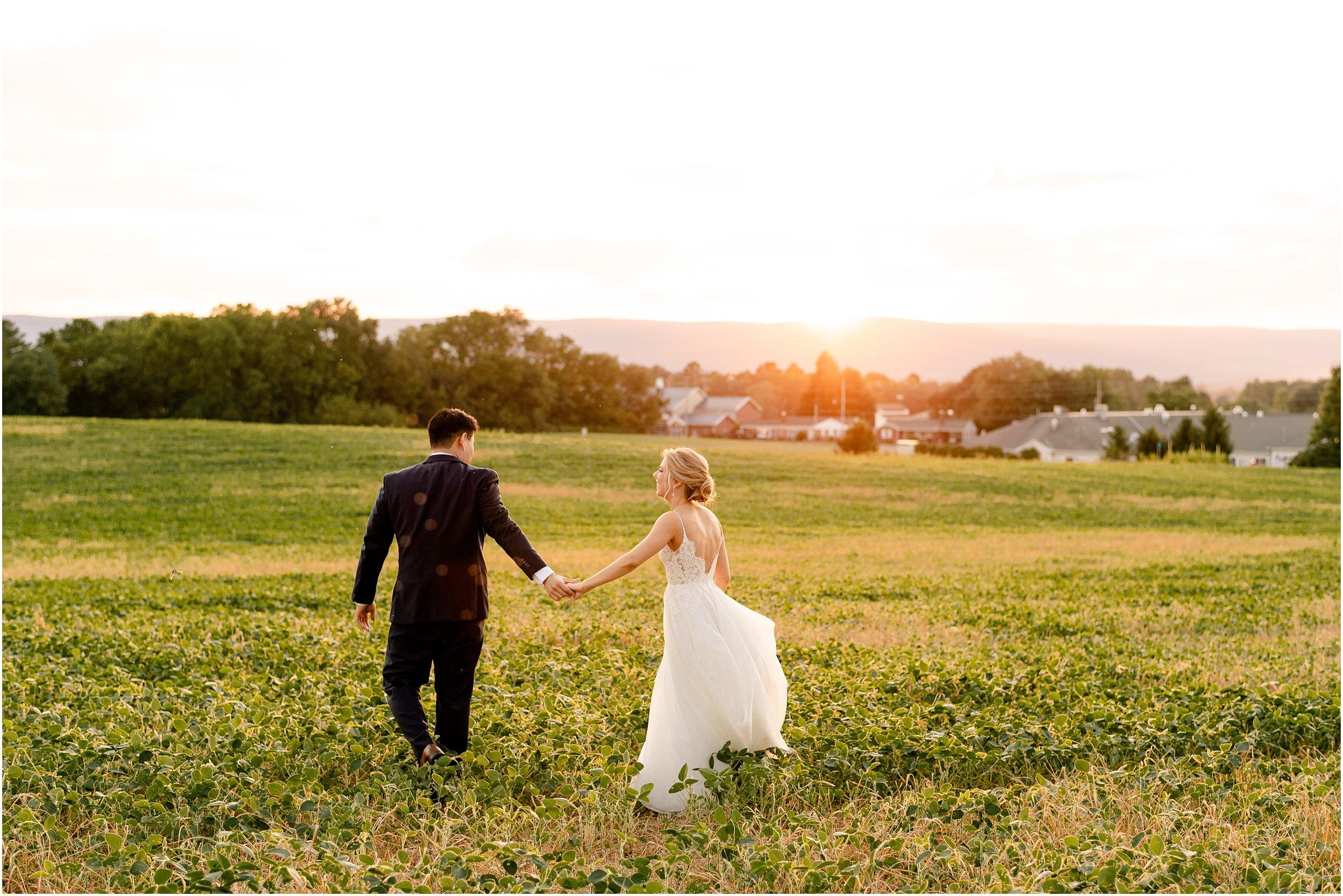 hannah leigh photography Walkers Overlook Wedding Walkersville MD_3567.jpg